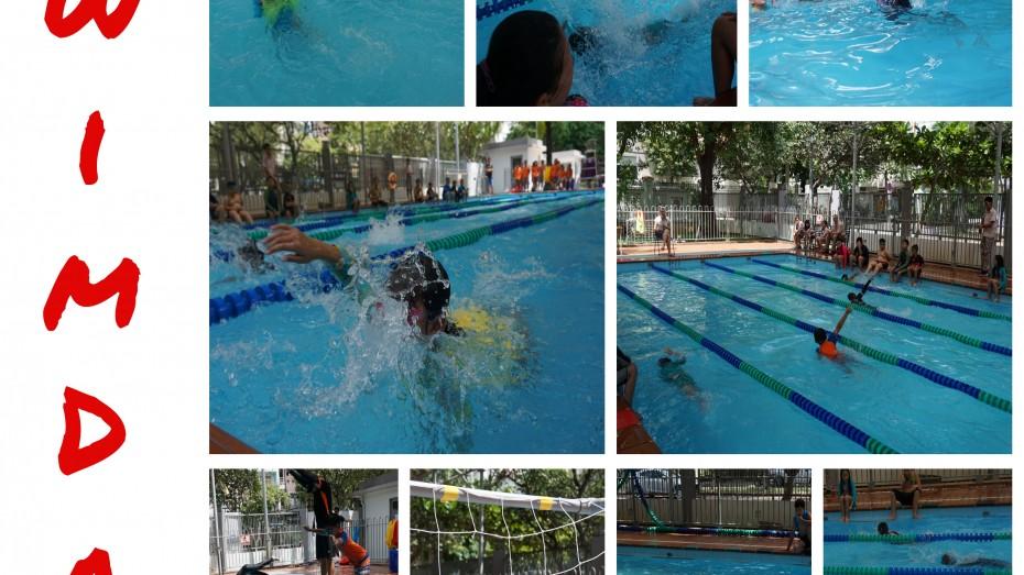 swim day 2019